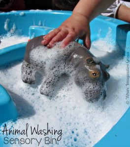 Animal Washing Sensory Play for Toddlers