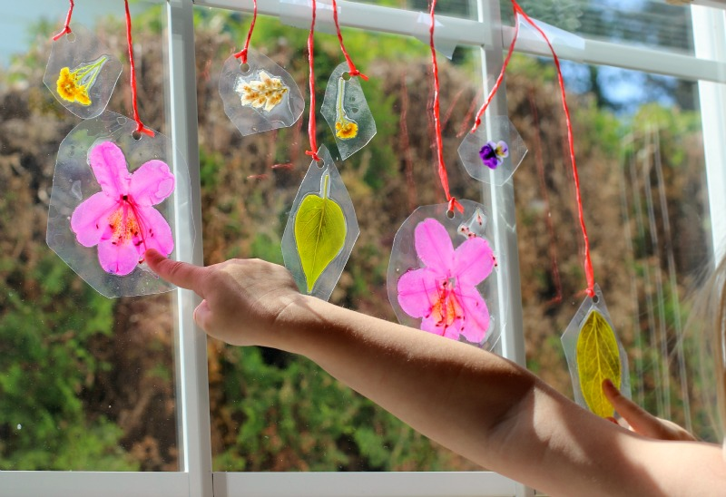 Summer Crafts for Kids: DIY Laminated Nature Suncatchers