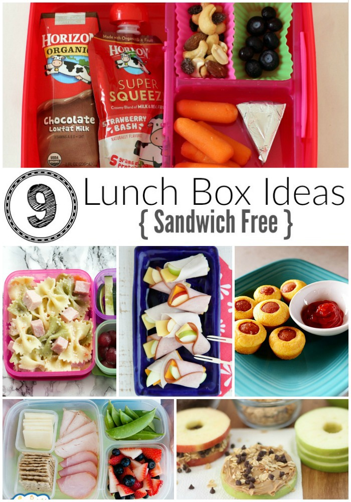 9 Easy Sandwich Free Lunch Box Ideas For Kids Where Imagination Grows